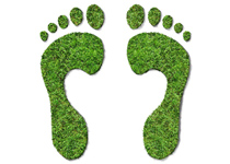Activists with size 12 carbon footprints