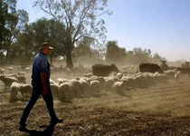 Rudd government stealing private property from Australian farmers