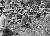 Kokoda commemoration (NSW)